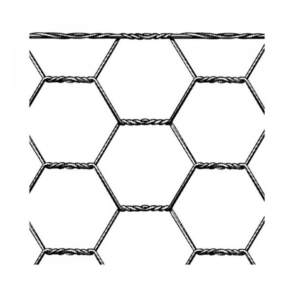 hexanet-3429-800x800.jpg