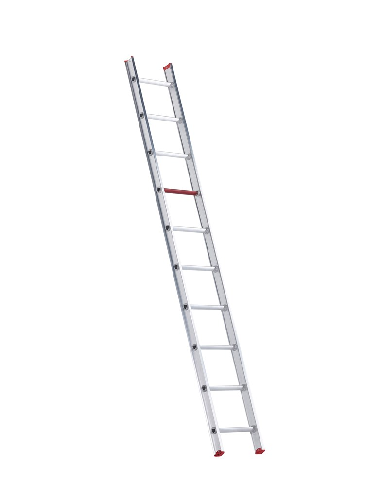 https://www.ez-catalog.nl/Asset/b8e9b29b975a4e7e9bb7bd6e377cdcb2/ImageFullSize/108310-8711563157804-ladder-all-round-enkel-1-x-10-v.jpg