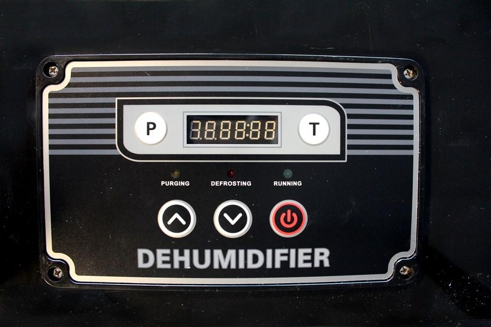 412821.jpg