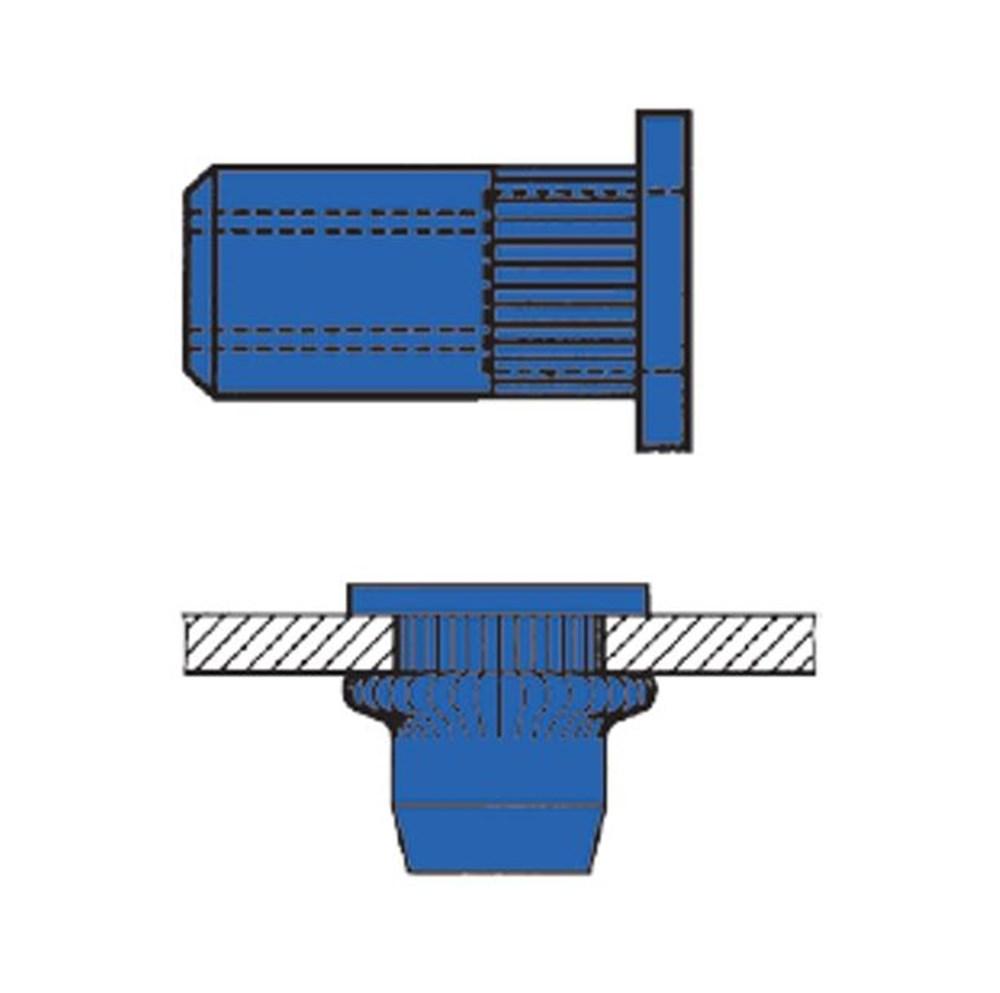 blindklinkmoeren cilinder kartel temp.jpg